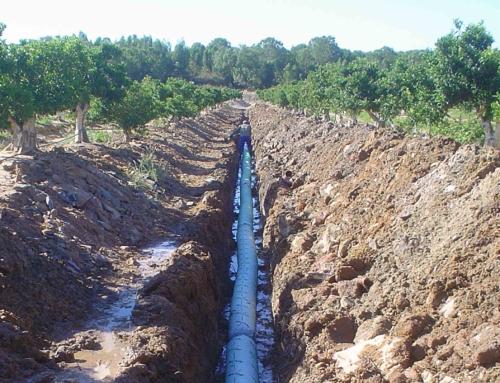 Drainage Cartaya Huelva 2012